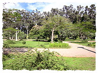 Park in Siem Reap