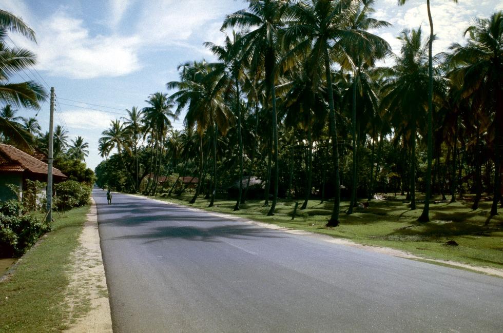 Sri Lanka Colombo additionally Thailand Bangkok Koenigspalast moreover Iglesia Adventista Central De San Fernando De Apure additionally Viaggi likewise Koffieplantage. on caripe venezuela